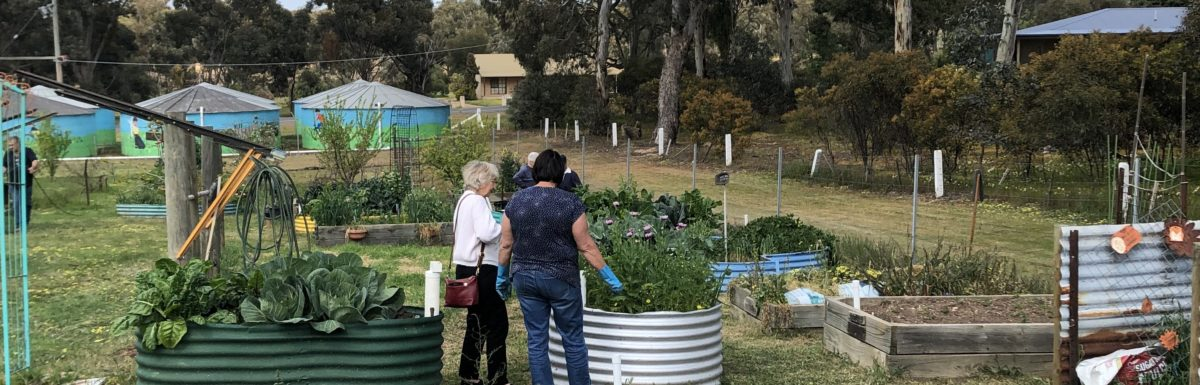 Raised Garden Beds at the St Arnaud Community Garden improve access thanks to the WDEA Works Foundation